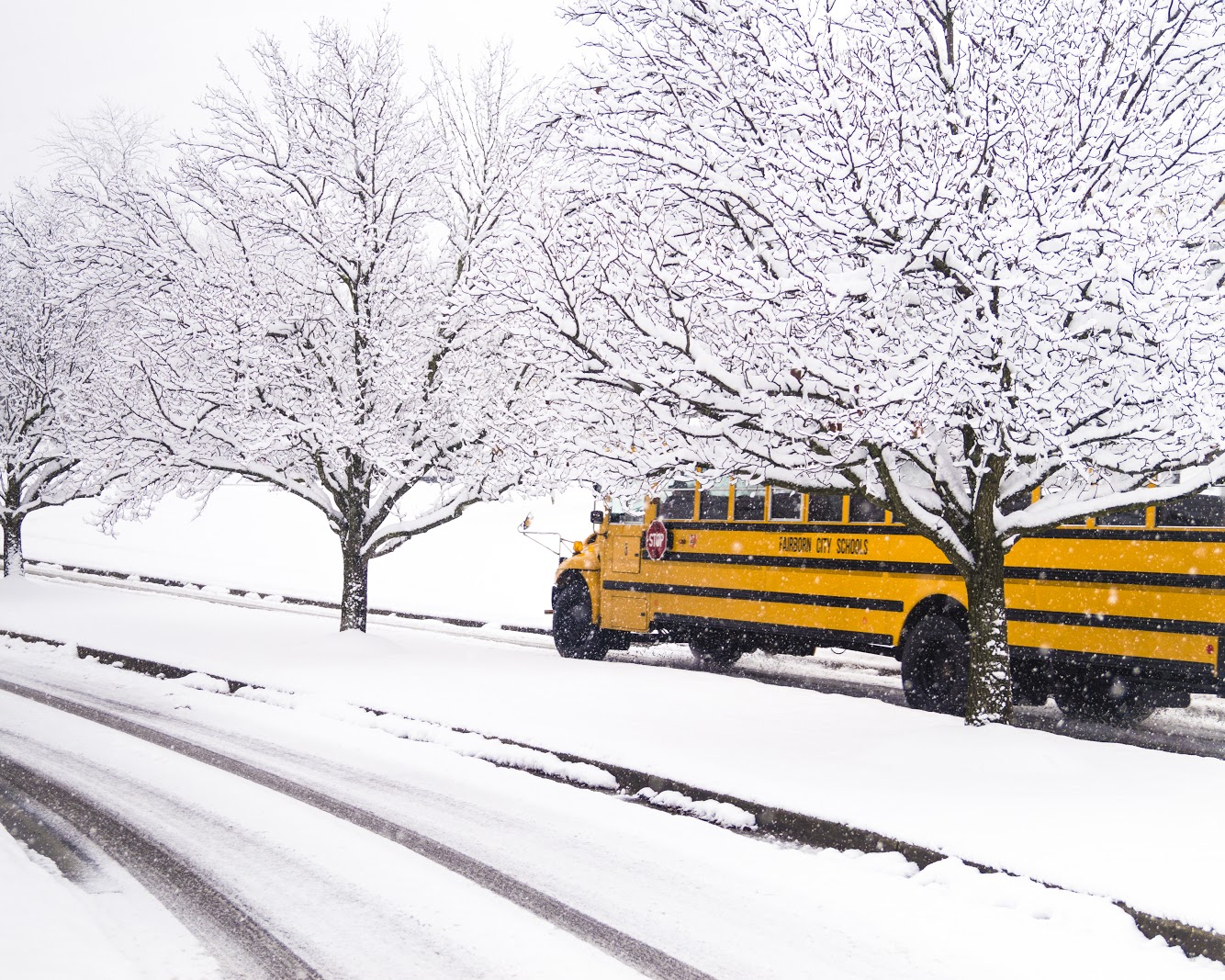 Proposed legislation could increase fines for school bus violations. Photography Soham Parikh / The Guardian