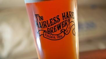 Dayton's Not Dead: Hairless Hare Photograph: Dayton.com