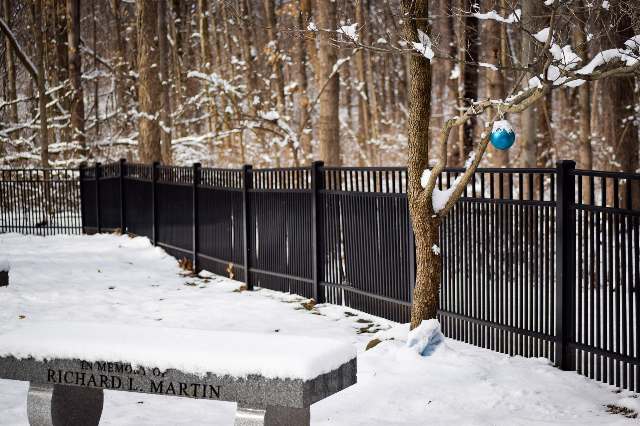 Snow in Rockafield Cemetery | Photo by Jessica Fugett | The Wright State Guardian
