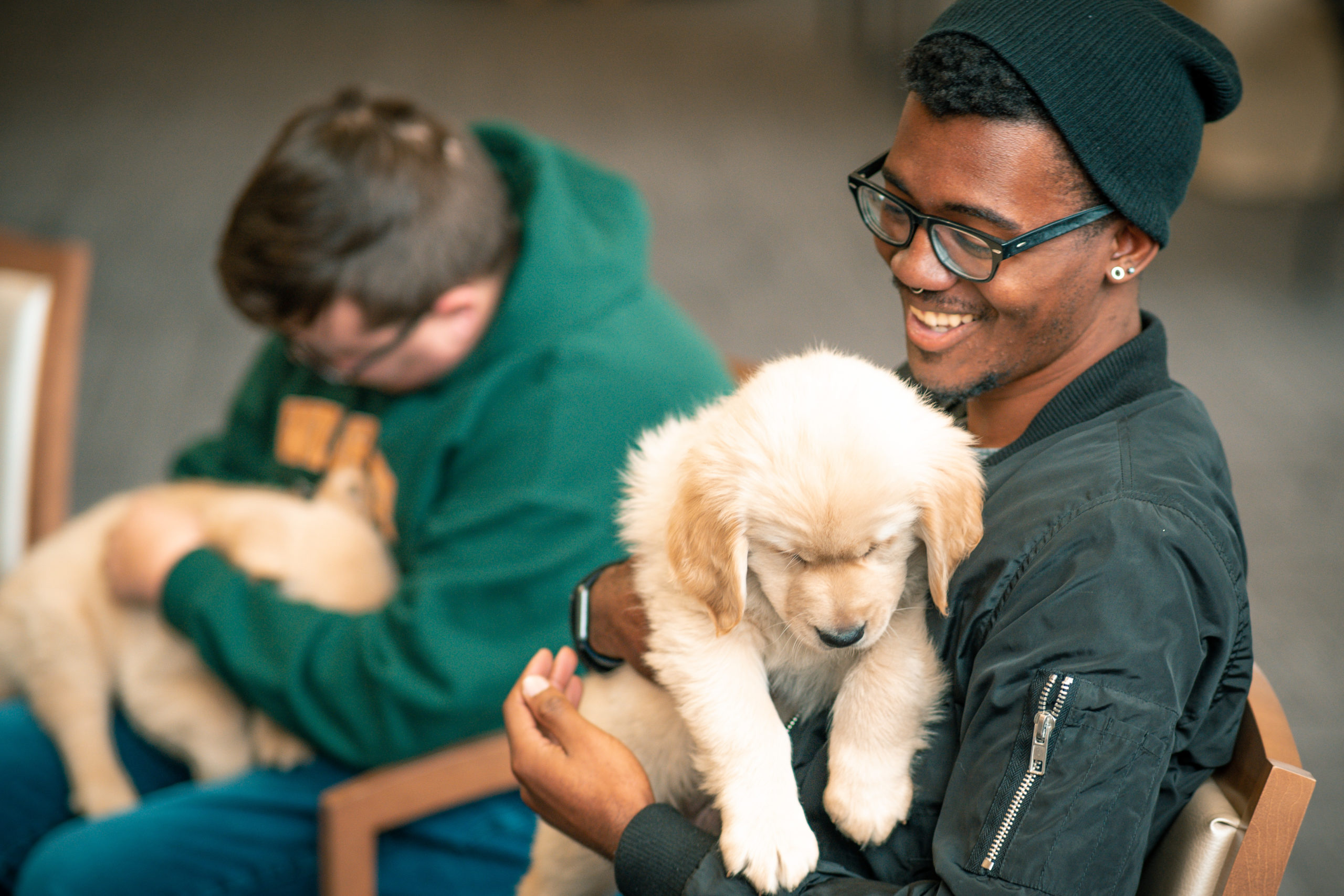 Fuzz Therapy | Photo by Soham Parikh | The Wright State Guardian