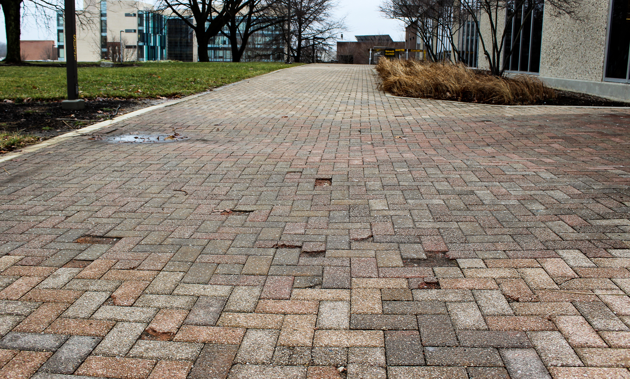 Broken bricks in front of the Student Union | Photo by Daniel Delgado | The Wright State Guardian