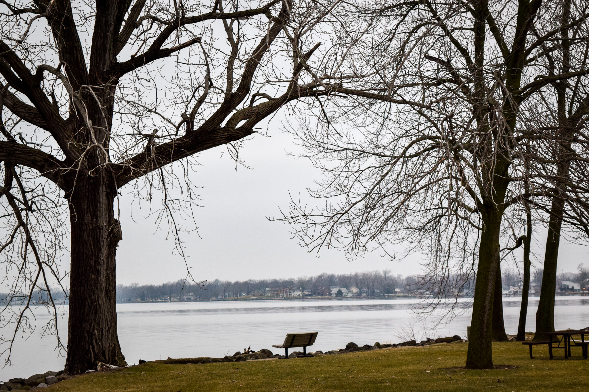 Local man found in lake | Photo by Jessica Fugett | The Wright State Guardian